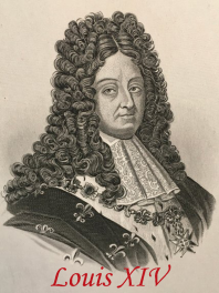 PELUCA LUIS XIV - XVII